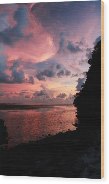 Out With A Roar Sunset Over Water Tarpon Springs Florida Wood Print