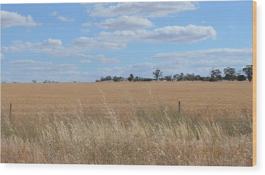 Outback  Wood Print