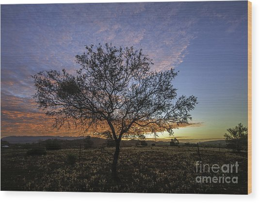 Outback Sunset  Wood Print