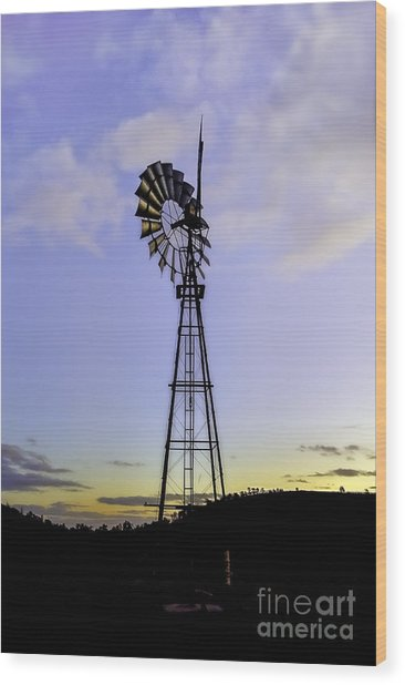 Outback Windmill Wood Print