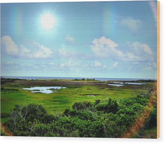 Outer Banks Tranquility Wood Print