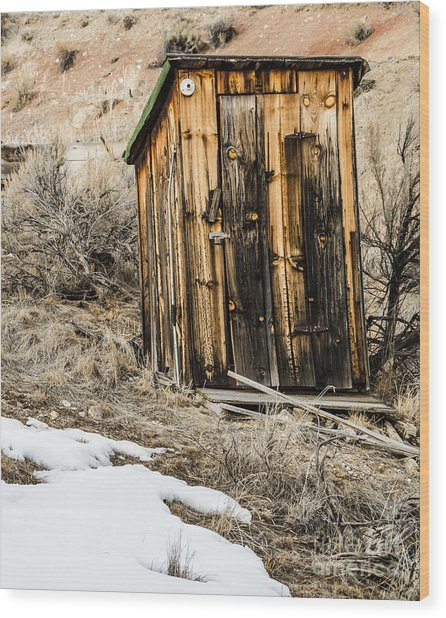 Outhouse With Electricity Wood Print