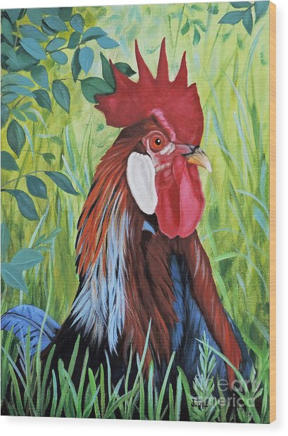 Outlaw Rooster Wood Print