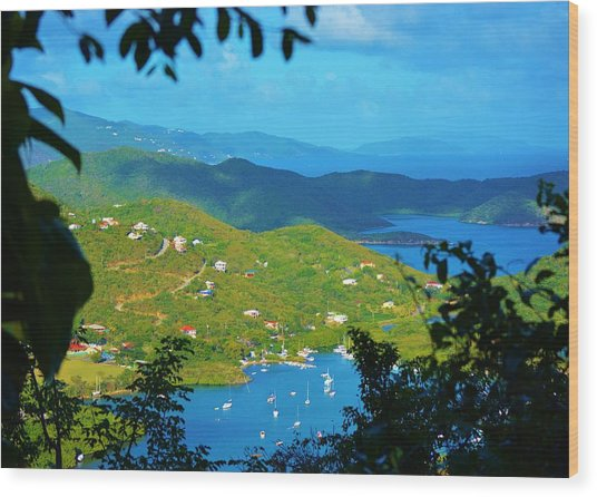 Over Coral Bay Wood Print