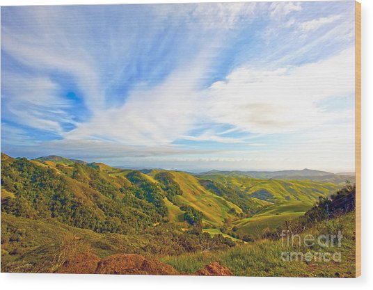 Overlooking Morro Bay Ca Wood Print by Artist and Photographer Laura Wrede