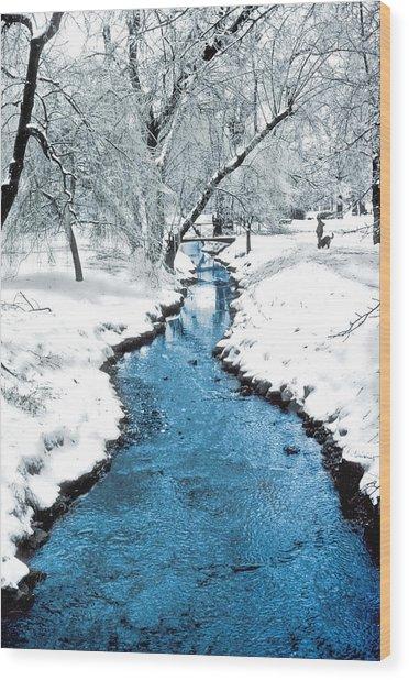 Overnight Snow In Edgemont Park Wood Print