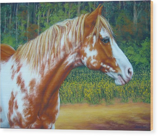 Overo Paint Horse-colorful Warrior Wood Print
