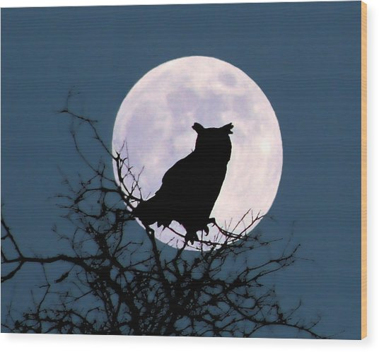 Owl And Blue Moon Wood Print
