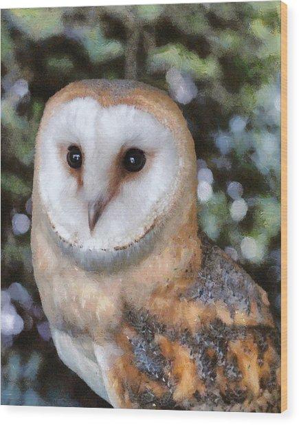 Wood Print featuring the digital art Owl - Bright Eyes 2 by Paul Gulliver