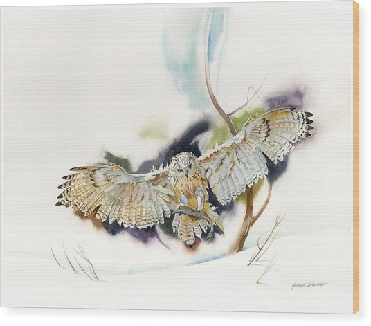 Owl Catches Lunch Wood Print