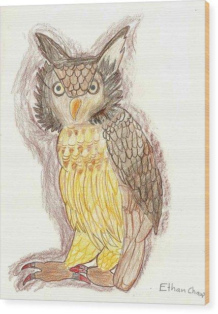 Wise Owl Wood Print by Ethan Chaupiz