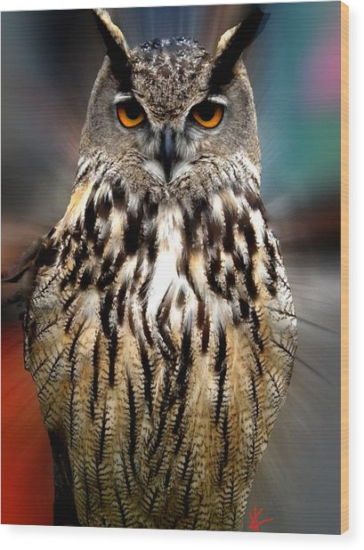 Wood Print featuring the photograph Owl Living In The Spanish Mountains by Colette V Hera  Guggenheim