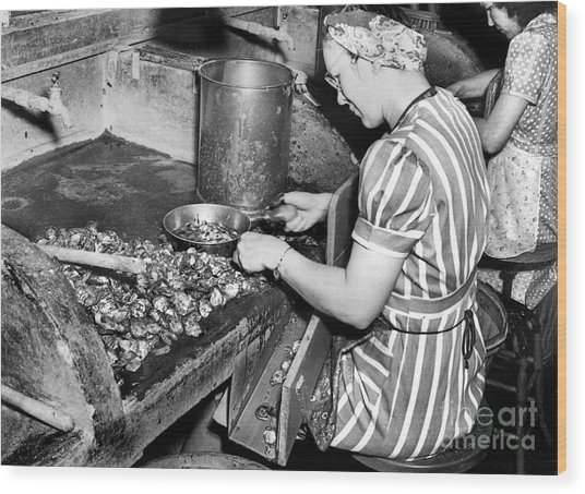 Oyster Industry Shuckers 1948 Wood Print