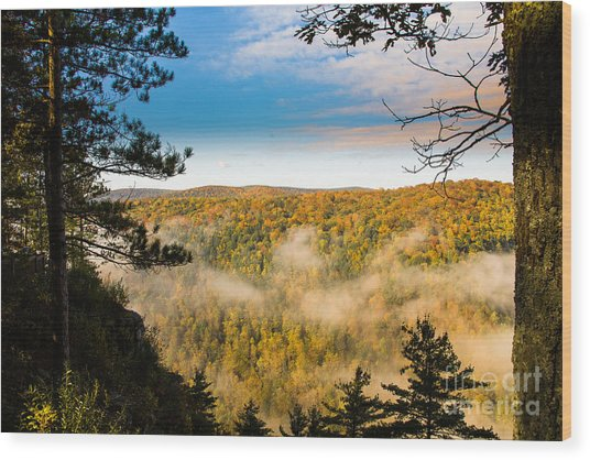 Pa Grand Canyon Wood Print