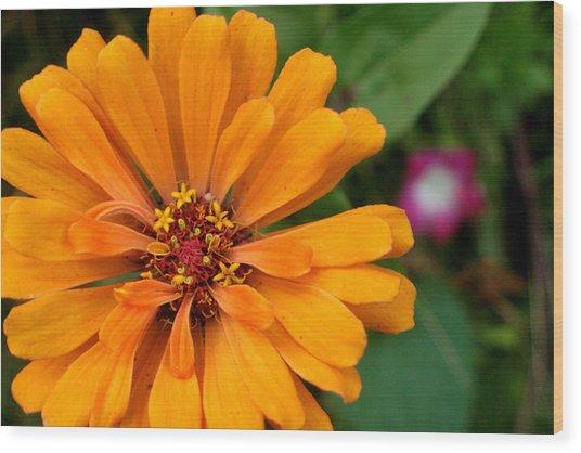 Pac-man As A Flower Wood Print by Artist Orange