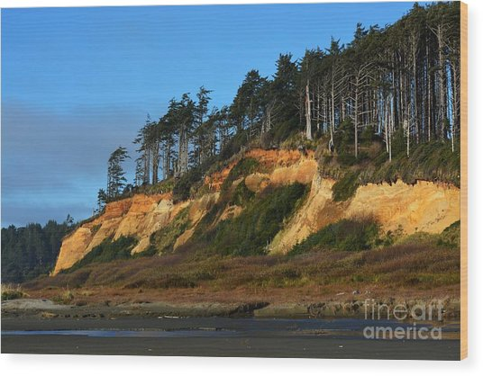 Pacific Coastline Wood Print