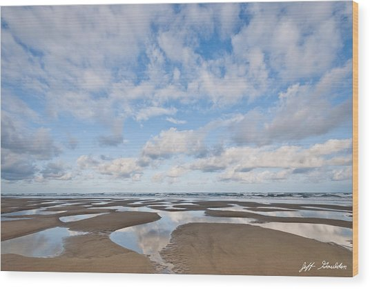 Pacific Ocean Beach At Low Tide Wood Print