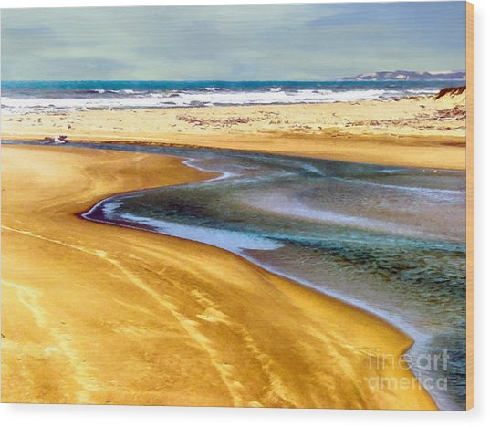 Pacific Ocean Beach Santa Barbara Wood Print