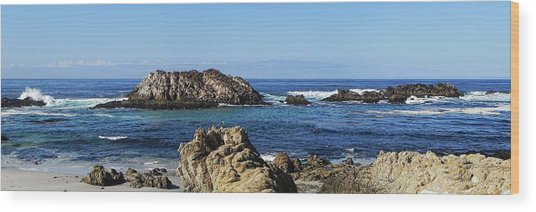 Pacific Ocean Panoramic Wood Print