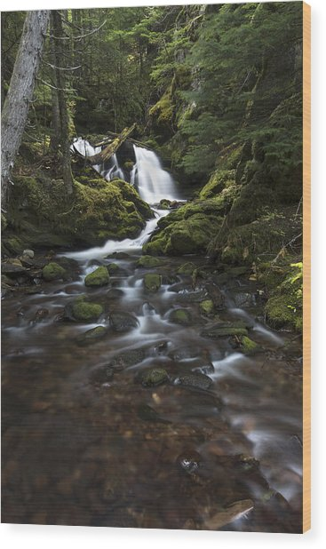 Packer Falls #3 Wood Print