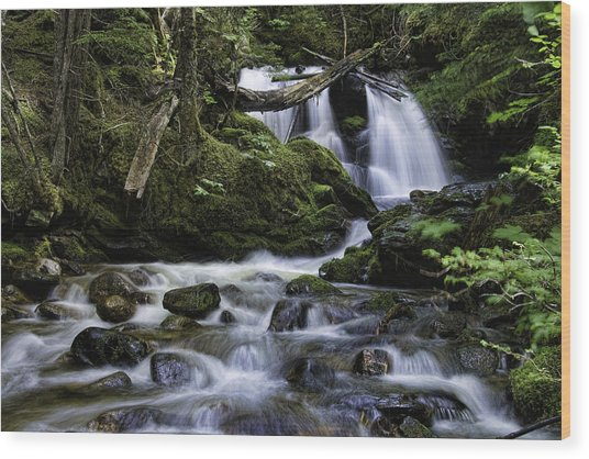 Packer Falls And Creek Wood Print