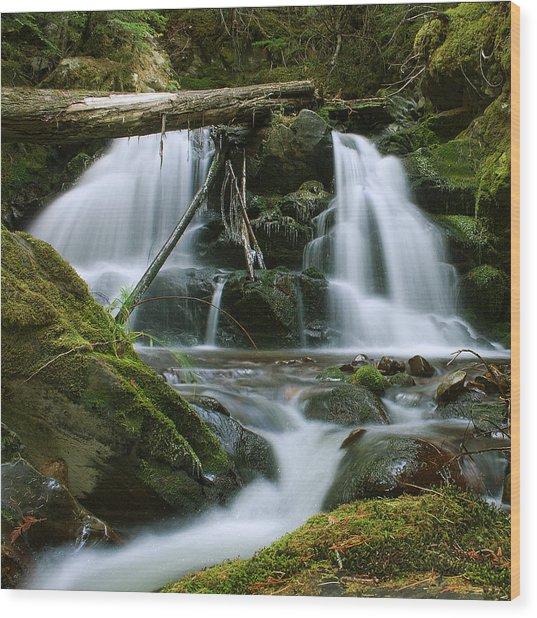 Packer Falls Wood Print