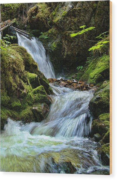 Packer Falls Vert 1 Wood Print