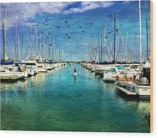 Paddle Boarder  In The Harbor Wood Print