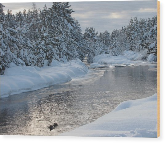 Paddling Up The Snowy River Wood Print