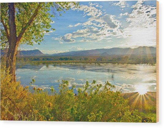 Pahranagat National Wildlife Refuge Wood Print