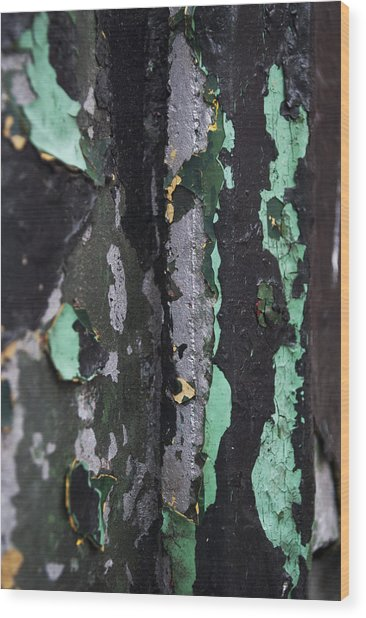 Paint Wood Print by Gretchen Lally