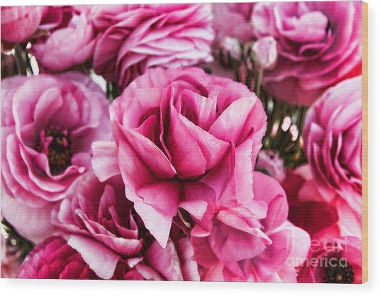 Paint Me Pink Ranunculus Flowers By Diana Sainz Wood Print