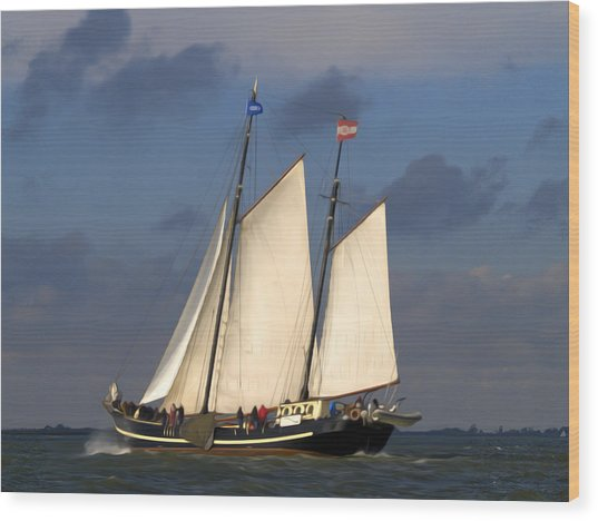 Wood Print featuring the photograph Paint Sail by Luc Van de Steeg