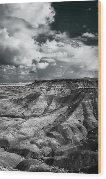Painted Desert From Lacey Point Wood Print by Jerry Ginsberg