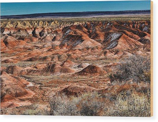 Painted Desert In Winter Wood Print