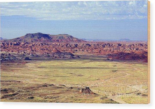 Painted Desert Vista Wood Print by Douglas Taylor