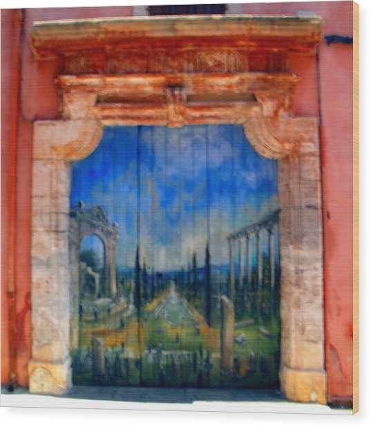 Painted Door In Roussillon Wood Print