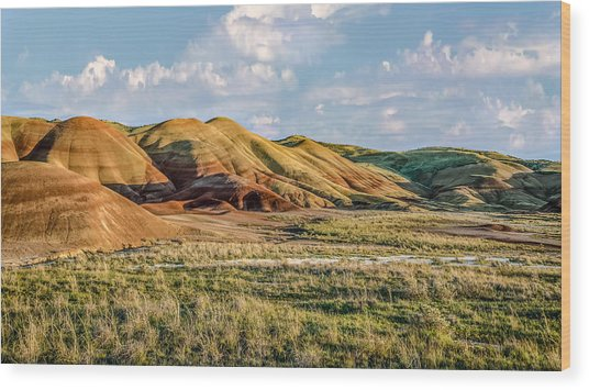 Painted Hills Sunset Wood Print by Joe Hudspeth