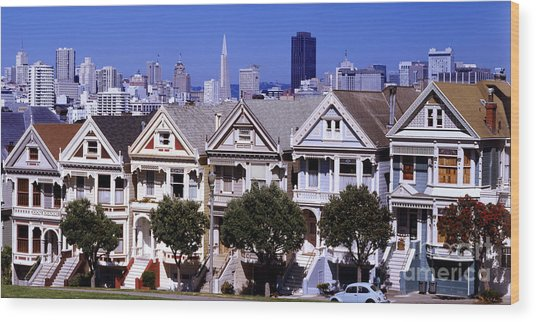 Painted Ladies Wood Print by Ron Smith