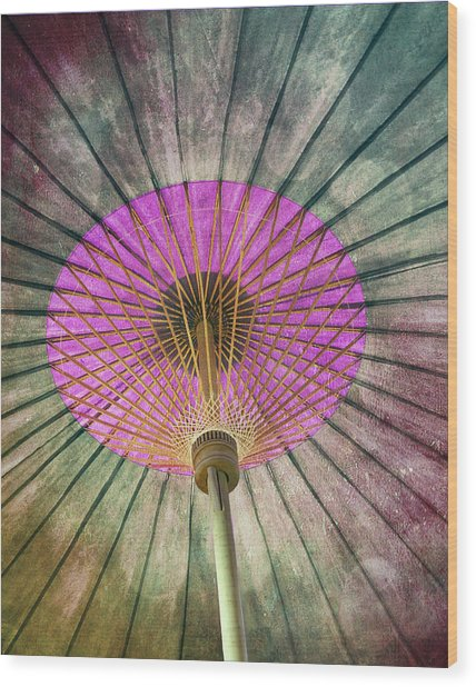 Painted Parasol  Wood Print by Stephen Norris