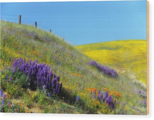 Painted With Wildflowers Wood Print