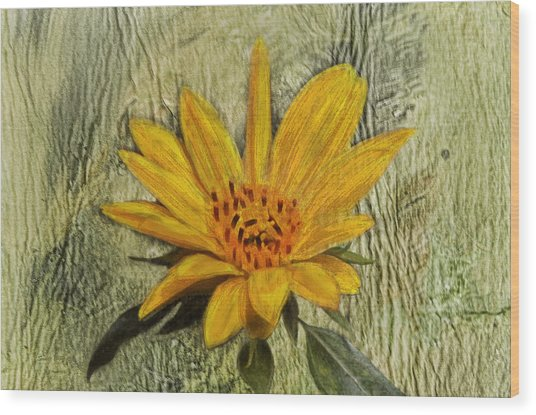 Painterly Sunflower Wood Print