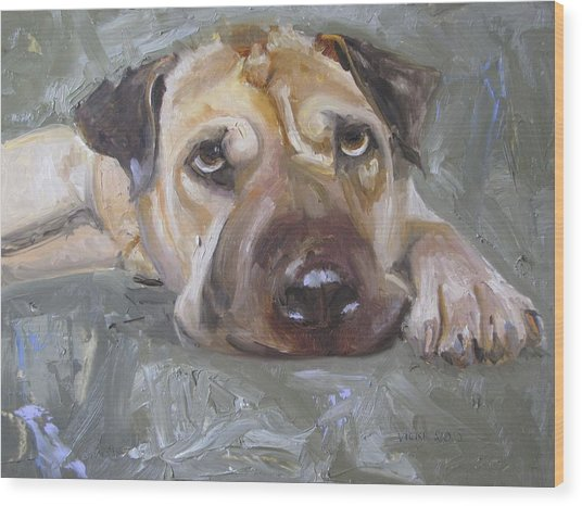 Paisley The Shar Pei Wood Print