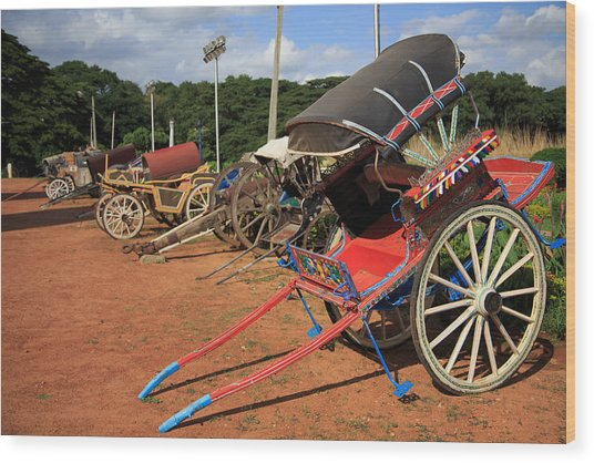 Palace Carriages - India Wood Print