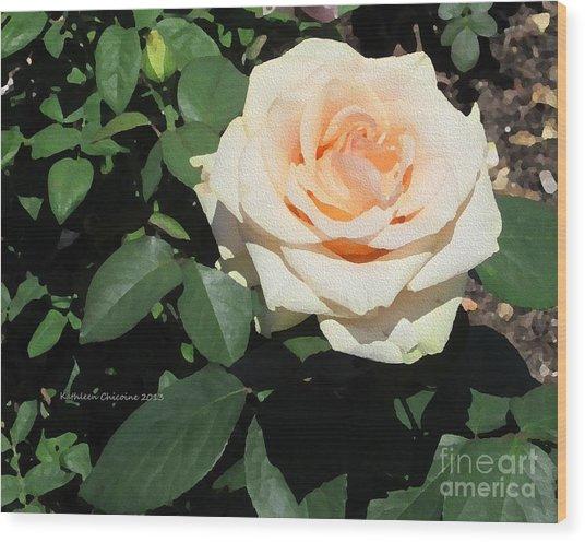 Pale Rose Wood Print