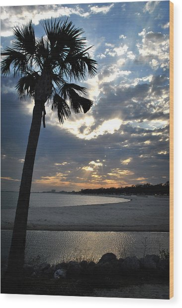 Palm And Sky Wood Print