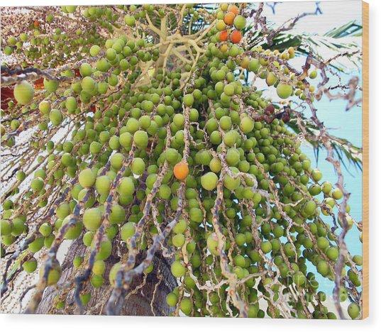 Palm Grapes Wood Print