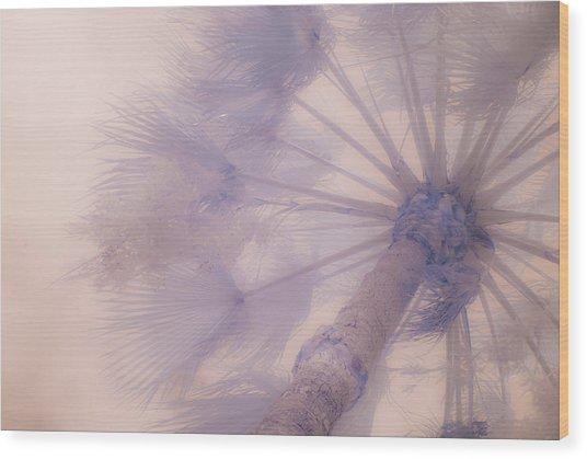 Palm Haze Wood Print