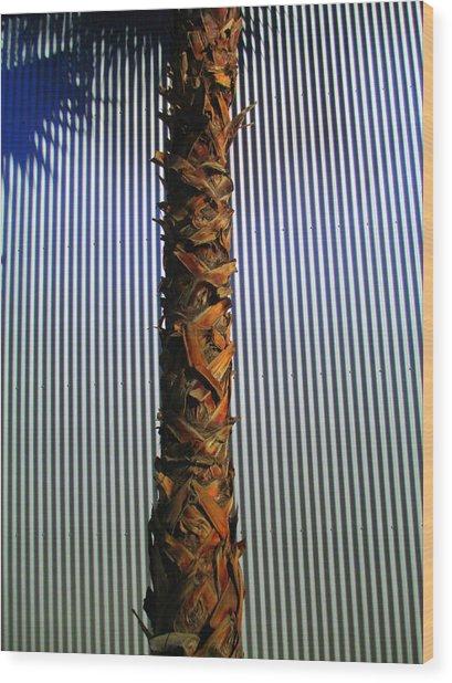 Palm On Sheet Metal Wood Print