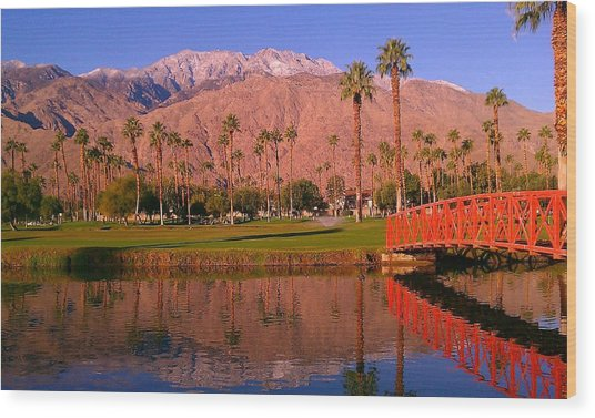 Palm Springs Wood Print